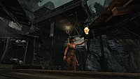 Tomb Raider 79