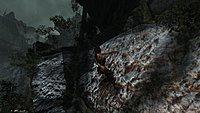 Tomb Raider 95