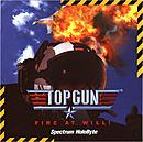 Top Gun : Fire At Will