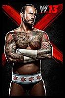 WWE13 16